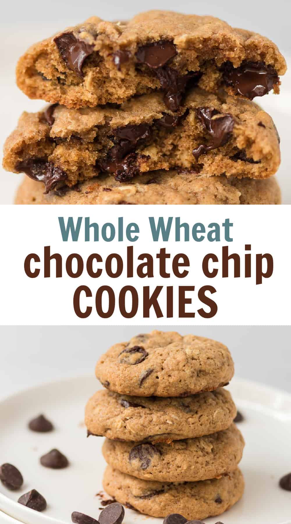 """image with text """"whole wheat chocolate chip cookies"""""""