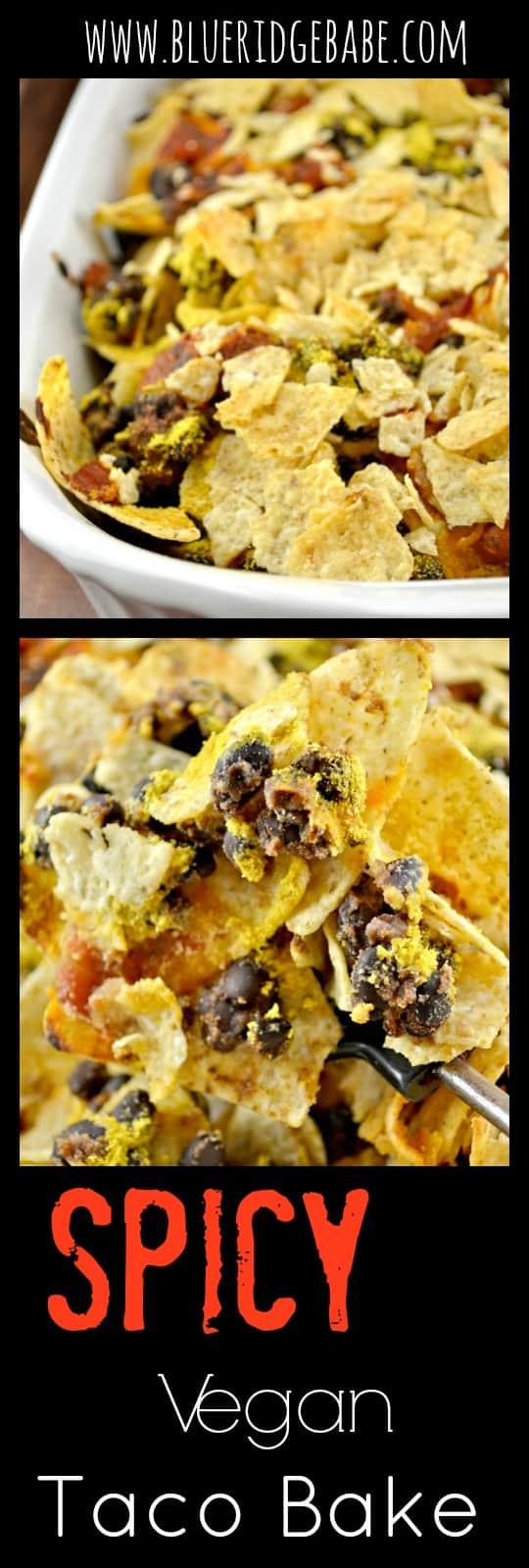spicy vegan taco bake recipe