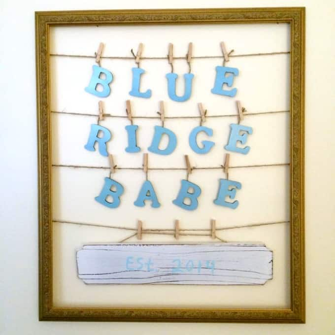 blue-ridge-babe-established