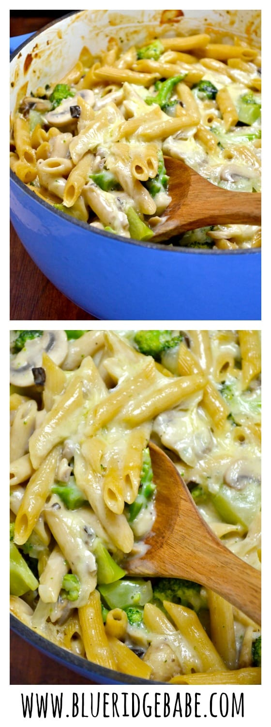 whole wheat broccoli and cheddar penne bake