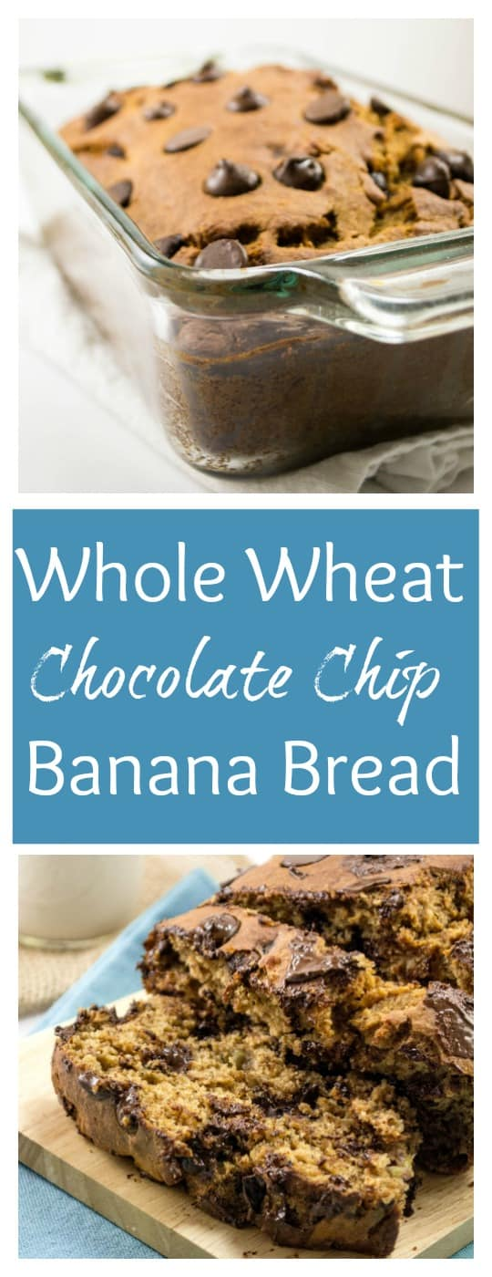 Whole Wheat Chocolate Chip Banana Bread - Build Your Bite