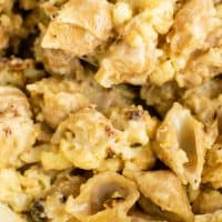 Roasted Cauliflower Shells and Cheese