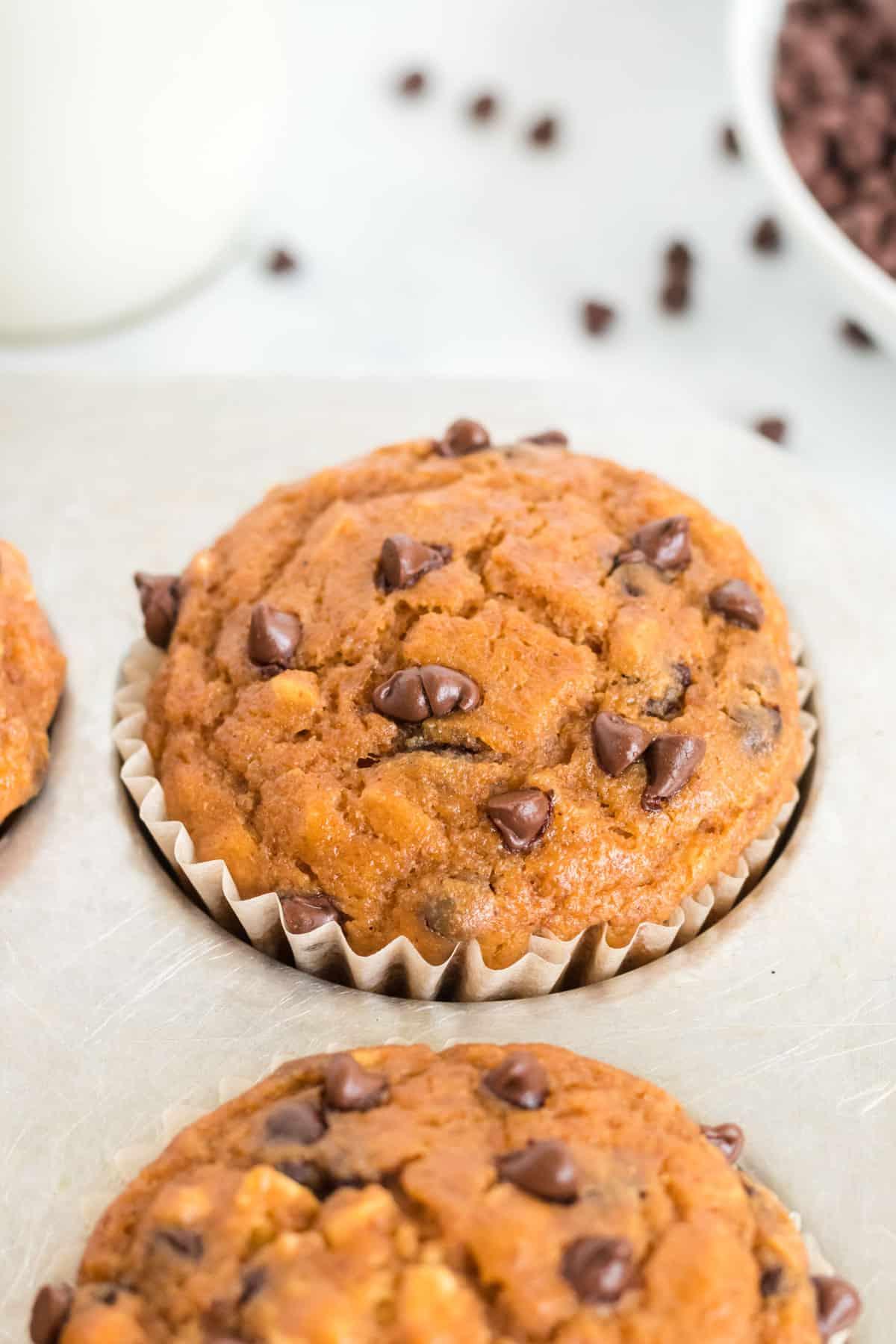 pumpkin chocolate chip muffin in the baking pan