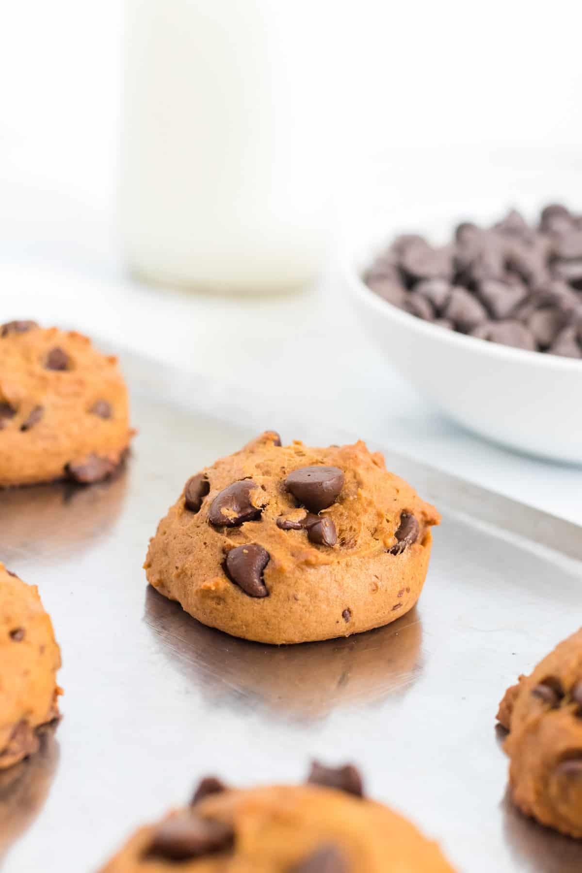 soft pumpkin chocolate chip cookie