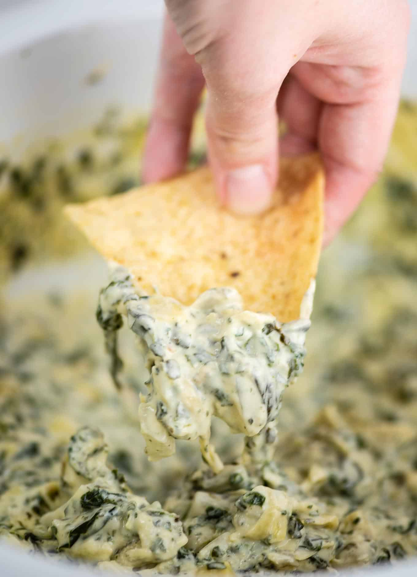 fingers holding a chip dipped in spinach artichoke dip
