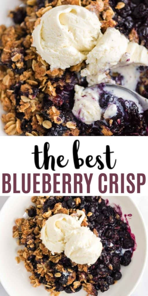 "Image with text ""the best blueberry crisp"""