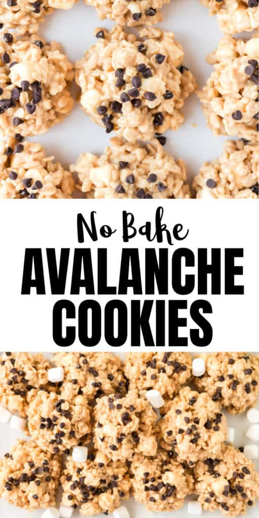 """image with text """"no bake avalanche cookies"""""""
