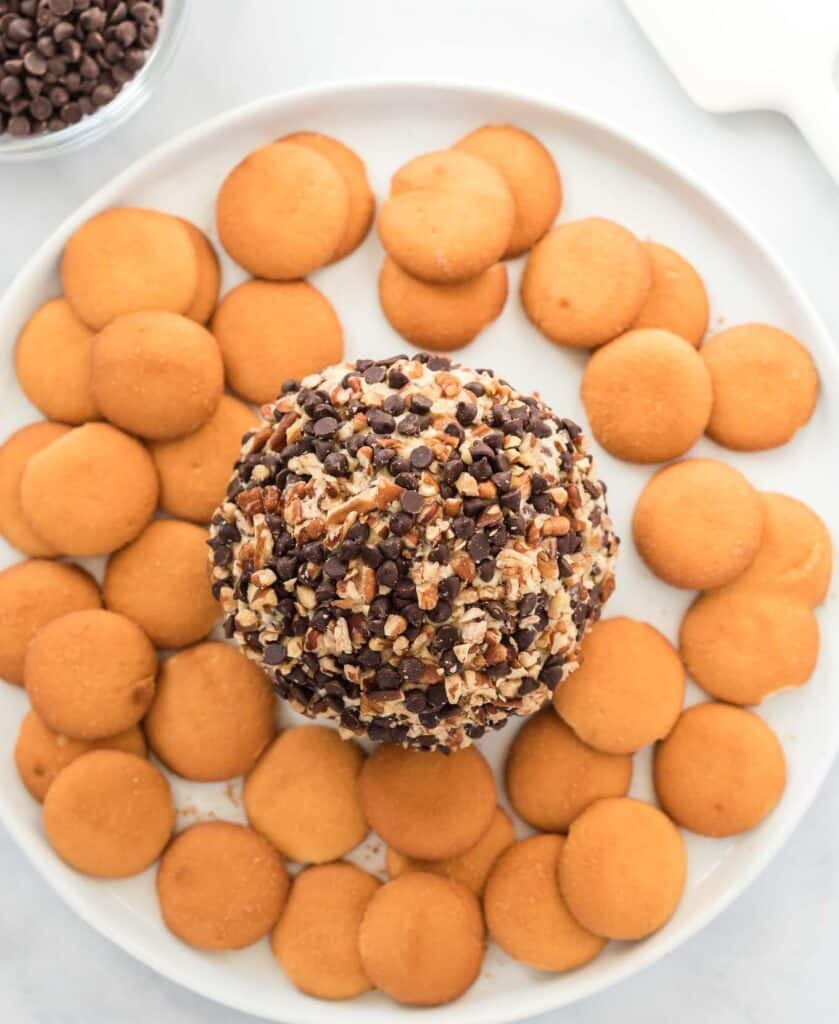 chocolate chip cheese ball on a white plate surrounded by nilla wafers