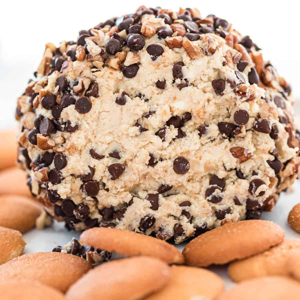 chocolate chip cheese ball with nilla wafers