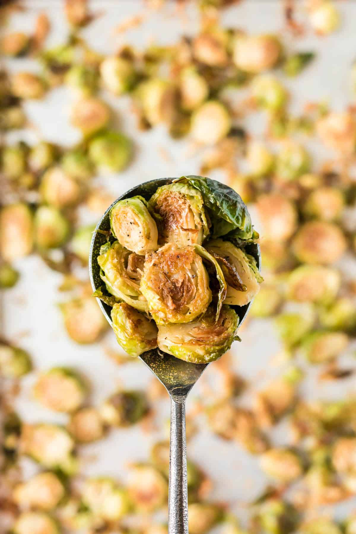 serving spoon full of roasted brussel sprouts