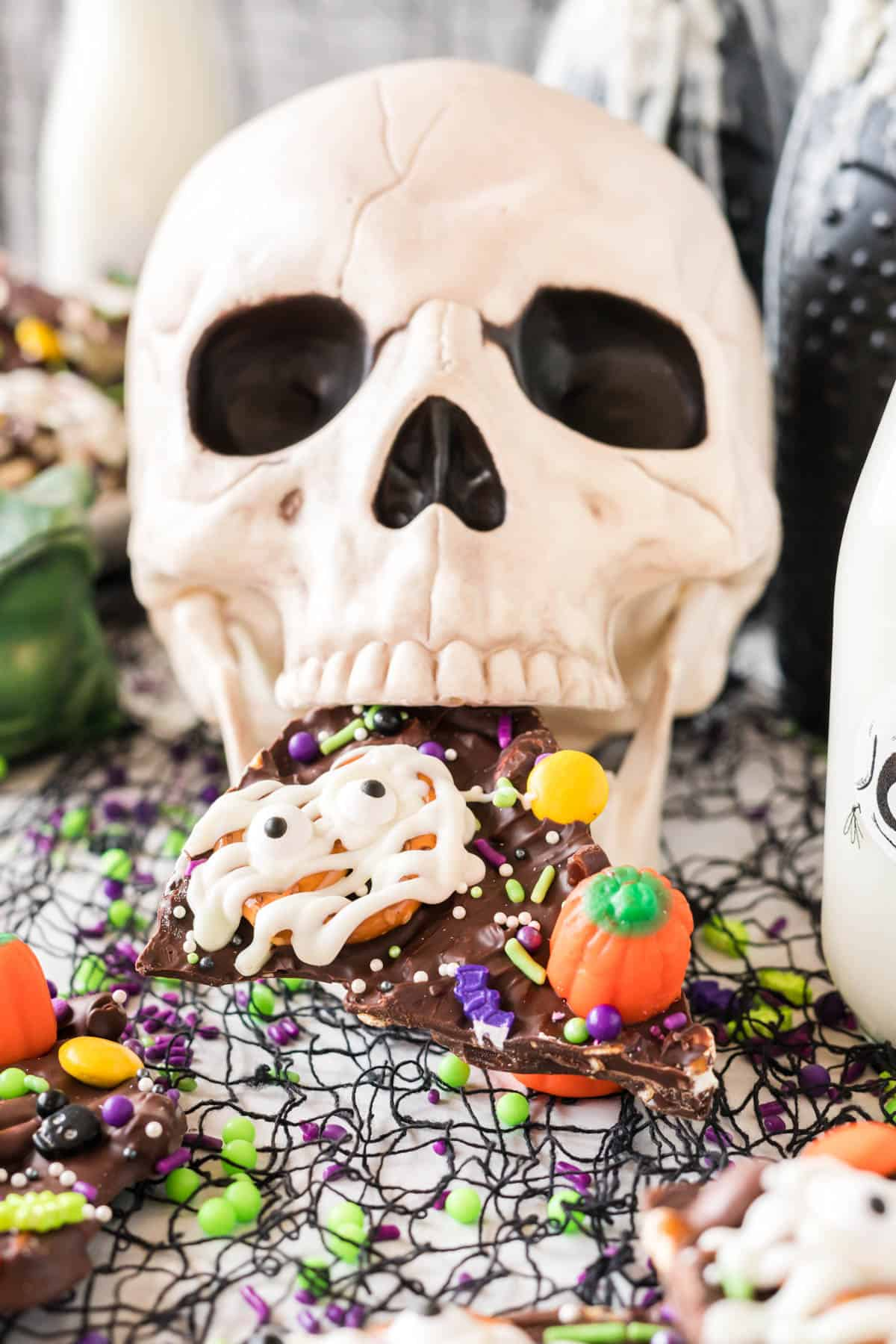 skull with a piece of halloween bark in it's mouth